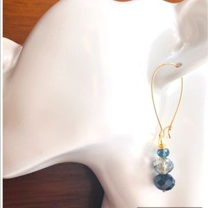 Frontrow.style Jewelry - 🤩14k Verneil Sterling Silver French Wire Blues